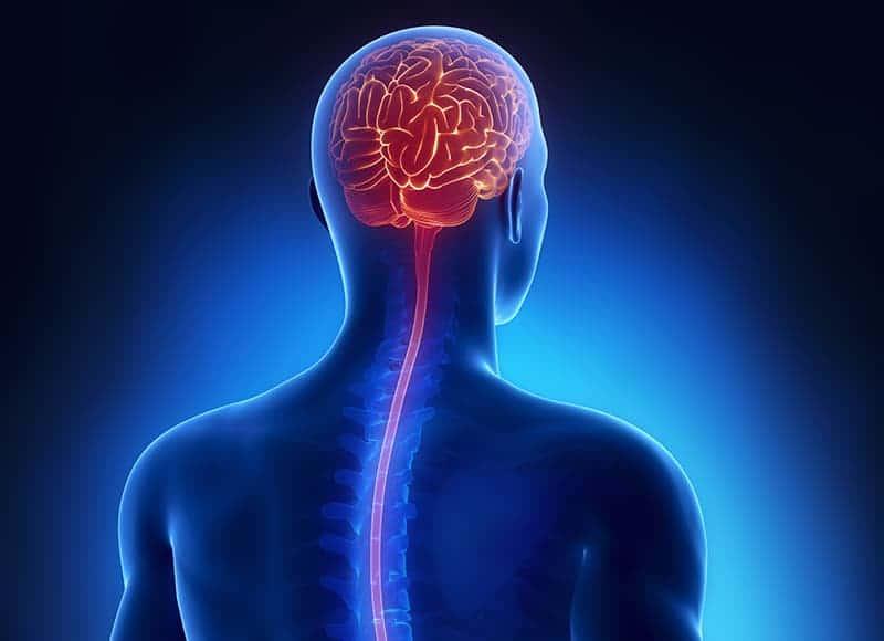Kurz Neuro-spinální rebalance